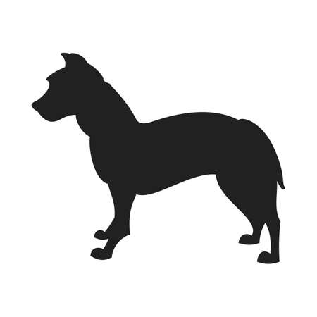 Vintage vector image of a black silhouette of a thoroughbred Pitbull Dog standing straight isolated on white background looking like a shadow of the image. Illustration