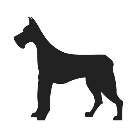 dane: Vintage vector image of a black silhouette of a thoroughbred Great Dane dog standing straight isolated on white background looking like a shadow of the image.