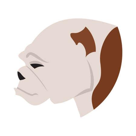 pedigree: Pedigree dog head bulldog flat. Young adorable animal, vector illustration Illustration