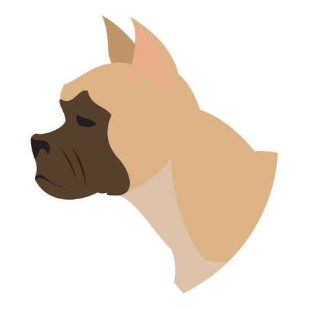purebred: Dog head french bulldog. Snout of hound isolated on white background. Vector illustration