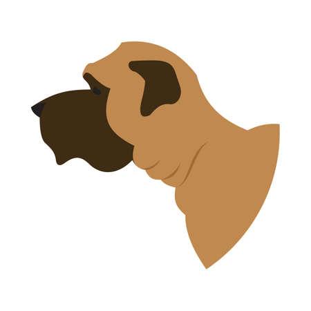 Dog head english mastiff. Breed dog isolated on white background. Vector illustration Illustration