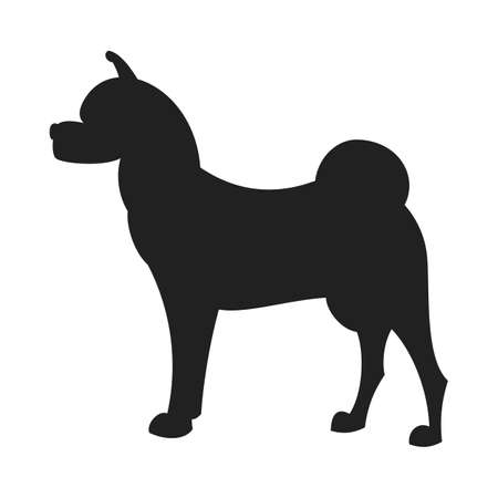 akita: Vintage vector image of a black silhouette of a thoroughbred Akita Dog standing straight isolated on white background looking like a shadow of the image.