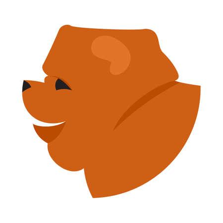 pedigree: Dog head chow-chow. Companion doggy pedigree, vector illustration