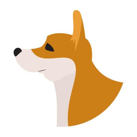 pembroke: Dog head corgi pembroke welsh. Animal purebred, vector illustration Illustration