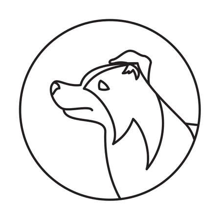pedigree: Line collie border head dog in round. Linear puppy pedigree, vector illustration Illustration