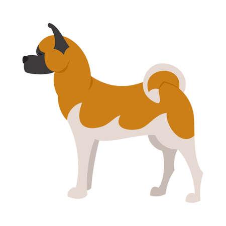 akita: Akita breed dog and domestic animal pet and young mammal puppy,  illustration