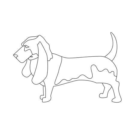basset hound: Basset hound linear style. Domestic young dog isolated. Vector illustration Illustration