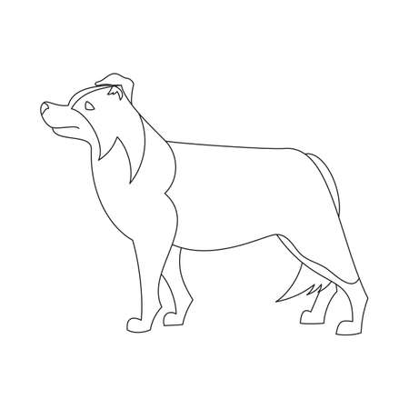 Border collie line flat. Dog friend standing, cute hound vector illustration