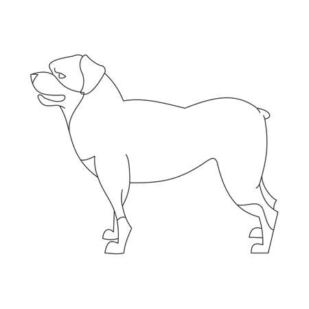 pedigree: Rottweiler dog linear. Domestic pedigree cute animal, vector illustration