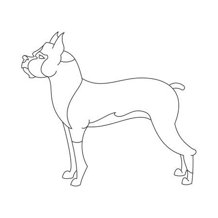 boxer dog: Boxer dog breed. Profile animal in linear style.  illustration