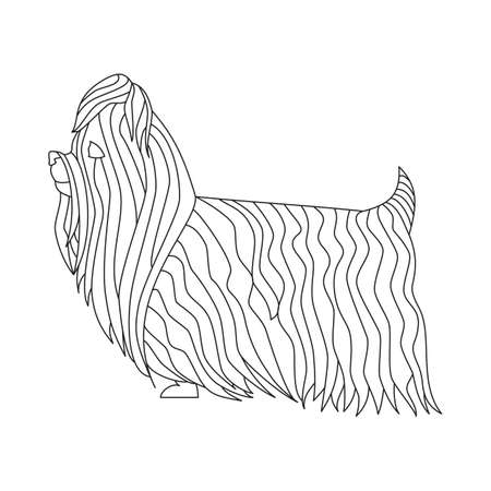 obedience: Yorkshire terrier dog. Friend mammal in flat line style. Vector illustration