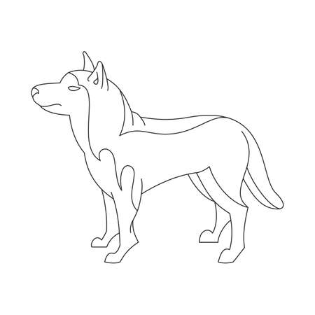 obedience: Siberian husky dog. Animal breed profile in linear style.  illustration