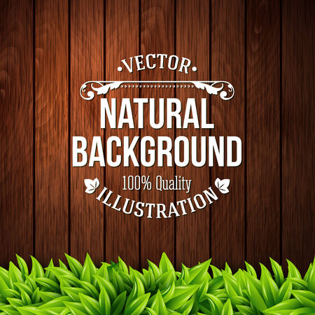 Natural background with wooden planks and leaves.  Vector