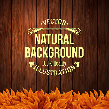 Natural background with wooden board and autumn leaves. Vector illustration.  Vector