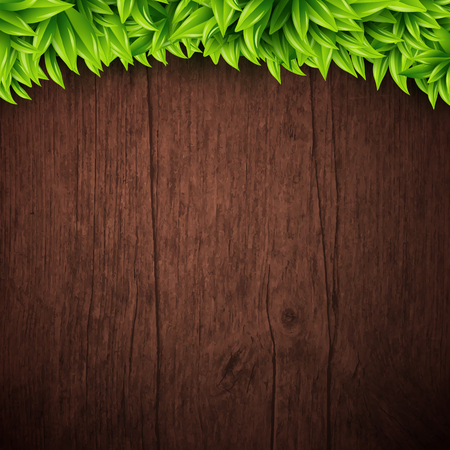 natural vector: Natural background with wooden board and leaves. Vector illustration.  Illustration