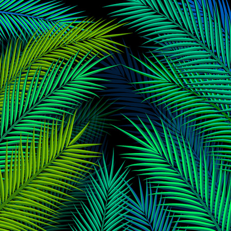 Tropical background with palm leaves. Vector illustration. Illustration