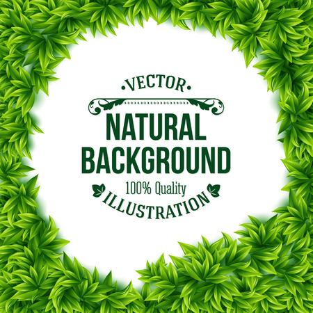 Natural frame of fresh green spring leaves surrounding a central copyspace with a white background and editable text in square format, vector illustration