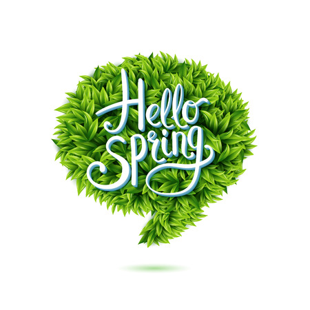 � spring: Hola saludo de primavera en una burbuja de discurso de las nuevas hojas verdes frescas j�venes aislados en blanco para su uso como elemento de dise�o para el eco y conceptos bio