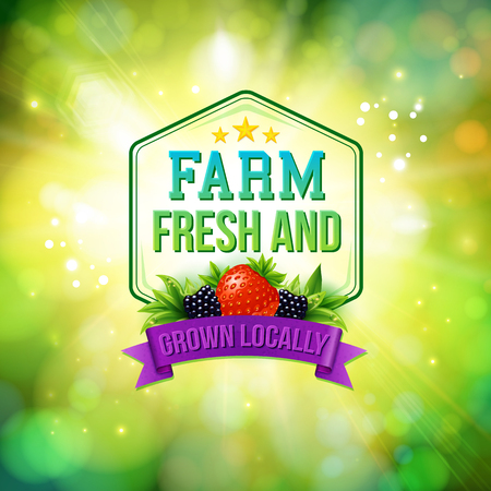 Farm Fresh and Grown Locally advertising poster with a sunburst over a sparkling green bokeh with a frame, banner and text decorated with fresh strawberry and blackberry, vector illustration Ilustrace