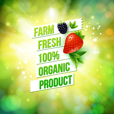 Guaranteed 100 percent Farm Fresh Organic Product poster or card design over a blurred green summer background with sun burst decorated with a ripe strawberry and blackberry, vector illustration Ilustração