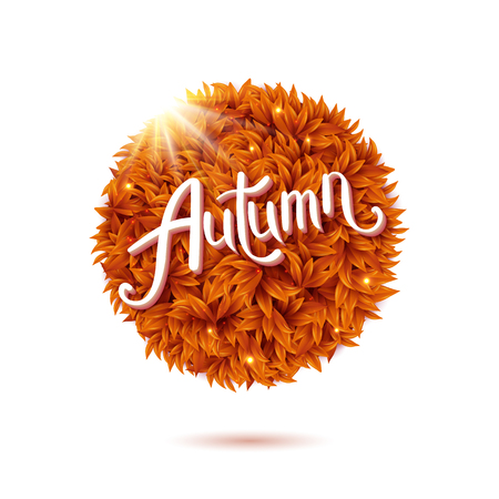 Round still life of autumn leaves with flowing stylish white text - Hello Autumn - and a glowing sunburst isolated on white, vector illustration design element. Ilustrace