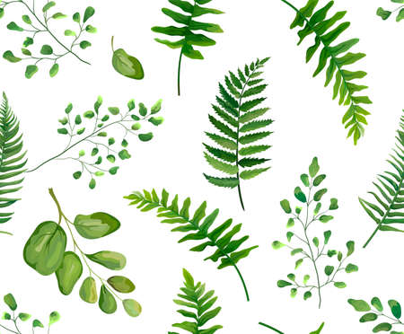 Seamless greenery green leaves botanical, rustic pattern Vector floral watercolor style design: forest fern frond leaf, herbs. Nature Wallpaper, natural texture, trendy print isolated white background