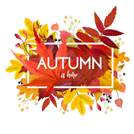 Autumn season Vector floral watercolor style card design  border frame: colorful orange yellow burgundy red fall leaves forest maple oak tree branches. Greeting, postcard, invite decorative copy space
