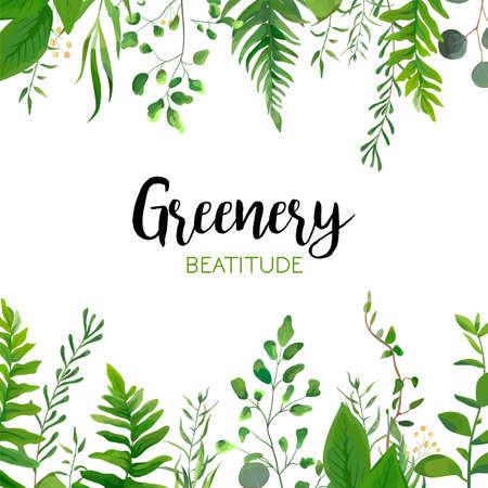 Vector floral greenery card design: Forest fern frond, Eucalyptus branch green leaves foliage herb greenery berry frame border. Wedding invite, poster invitation Watercolor hand drawn art illustration