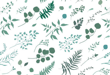 유칼립투스 팜 펀의 원활한 패턴 다른 트리, 단풍 자연 나뭇 가지, 녹색 나뭇잎, 허브, 열 대 열 대 발 뒤꿈치 손으로 그려진 된 실루엣 수채화 흰색 벡터 아름다움 우아한 배경