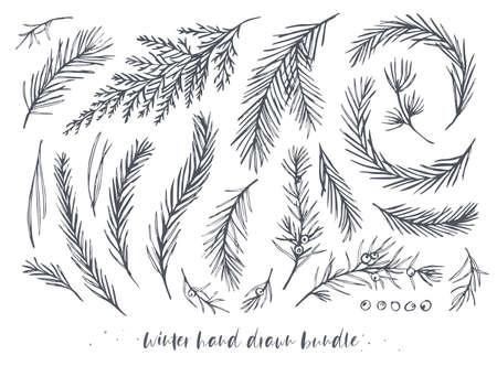 ベクトル手描き要素大きなセット、冬の木、松の針、ベリー、赤い木、青いスプルース、杉の常緑の葉とジュニパーの枝をバンドル。冬の休日、クリスマスの装飾的なアートオブジェクト