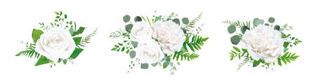Vector floral bouquet design: garden ivory white powder pale peony Rose, Eucalyptus branch, greenery forest fern leaves. Wedding invite card Watercolor elegant, tender, designer decorative element set
