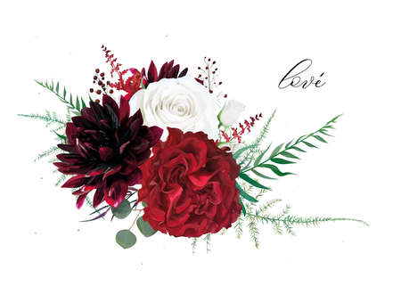 Stylish, burgundy dahlia, ivory white and red wine peony roses flowers & buds, tender asparagus green leaves, fern, astilbe, silver blue eucalyptus, berry, vector floral bouquet. Boho designer element