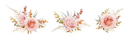 Vector floral bouquet design. Pink, blush peach Roses, fall, winter tones taupe, brown beige cream autumn Eucalyptus branch, leaves, fern. Wedding invite card decorative elegant watercolor element set Иллюстрация