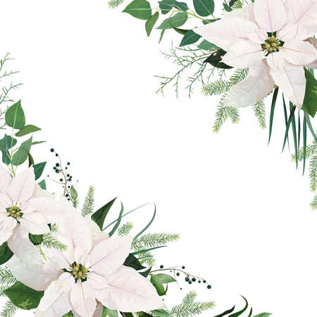 Vector elegant greeting card, poster, banner, winter wedding invite. White poinsettia flower, Christmas tree branches, eucalyptus greenery, green leaves, berry floral frame tender holiday illustration Illustration