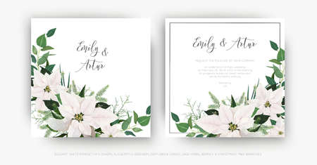 Stylish, winter season floral wedding invite, invitation, greeting card vector template set. Ivory white Poinsettia flower, Christmas spruce tree branches, Eucalyptus greenery, green leaves decoration