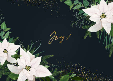 Winter season vector invite, greeting, banner template. White poinsettia flower, Christmas spruce tree branch, eucalyptus green leaves, golden glitter frame. Floral art Illustration on navy background