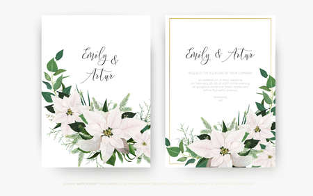 Luxury winter season wedding floral invite invitation card design. Ivory white Poinsettia flower, Christmas spruce tree branches, Eucalyptus greenery, green leaves decoration. Vector art editable set