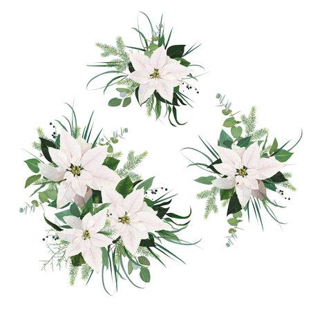Vector elegant white poinsettia flower, Christmas spruce tree branches, eucalyptus greenery, green leaves, berry bouquet set. Watercolor style botanical holiday illustration, editable designer element