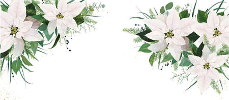Elegant festive winter season floral site banner cover design. White Poinsettia flowers, Christmas spruce tree twigs, Eucalyptus greenery branches, green leaves, herbs watercolor editable illustration