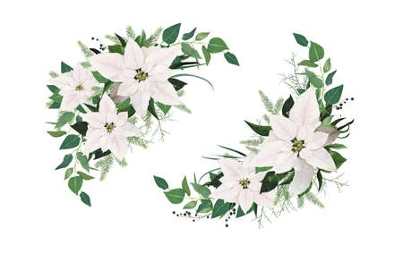 Vector elegant winter season half moon wreath, bouquet. White Poinsettia Christmas flower, spruce tree branches, Eucalyptus greenery, green leaves. Festive floral watercolor style holiday illustration Ilustração