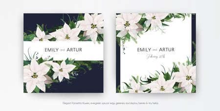 Winter season wedding floral invite, invitation, greeting card editable vector template set. White Poinsettia flowers, Christmas spruce tree branches, Eucalyptus, greenery leaves bouquet frame, border
