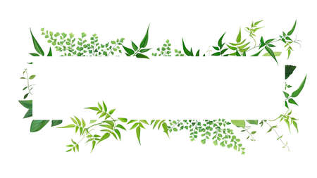 Fresh natural greenery leaves, branches, jasmine vine, forest fern, herb botanical border, frame, text space. Vector editable watercolor art illustration. Poster, banner, wedding invite, greeting card 矢量图像