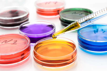 Pipette with drop of color liquid and petri dishes photo