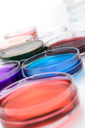 Color liquid in old plastic petri dishes Stock Photo