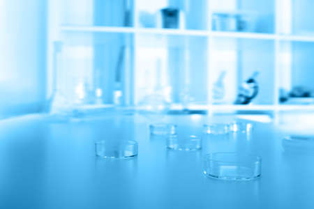 petri dishes used in laboratory photo