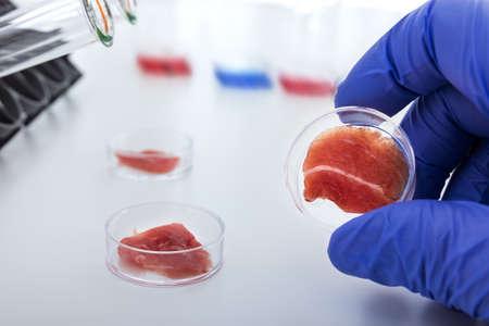 幹細胞から実験室で培養した肉 写真素材 - 21691350