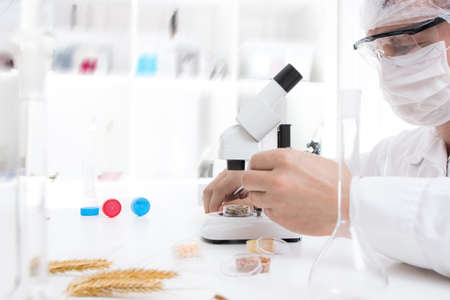 Laboratory assistant in the laboratory of of food quality