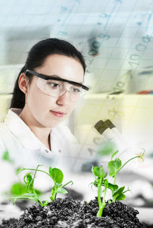 Scientist holding and examining samples with plants  Ecology laboratory  Stock Photo