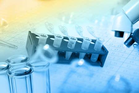 stem: Les microtubes avec des échantillons biologiques en laboratoire pour l'analyse de l'ADN Banque d'images