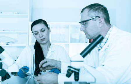 laboratory technician: Couple of scientists at work in a laboratory .